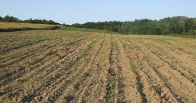 poljoprivredno-zemljiste-1331736036-136150