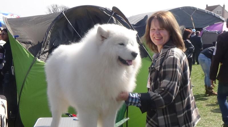 VI Međunarodna izložba pasa u Bogatiću