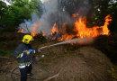 Visok rizik od šumskih požara