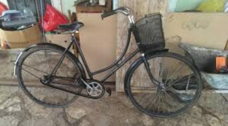 bicikl 12 (Large)