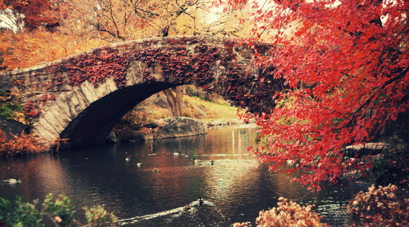 Jesen je stigla!