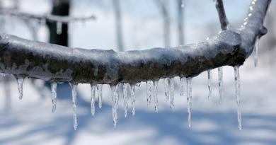 ice-snow-sneg-led-ledeni-dani-pixa