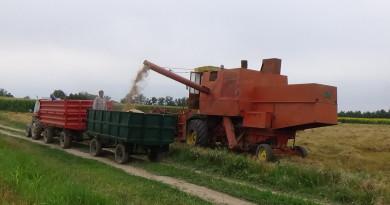 DSC03508